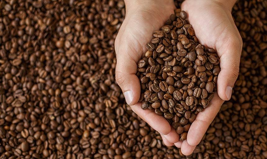 Bean Bean Coffee New York Ny - Free Wallpapers