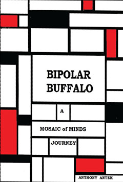 Check it Out - Bipolar Buffalo: A Mosaic of Minds Journey book cover