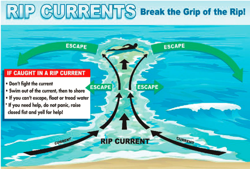 Chart: Awareness is key to staying safe in the ocean or any body of water, lifeguards say. Especially important, if you are caught in a rip current, follow the above steps to get out safely.