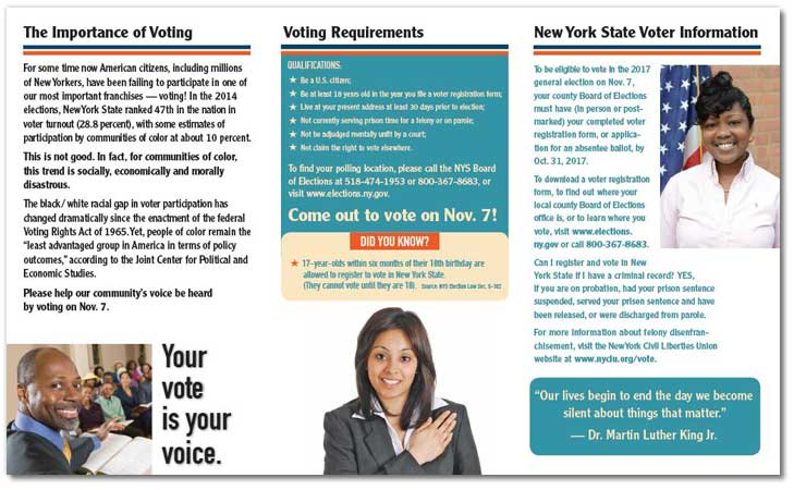 Your Vote is Your Voice brochure